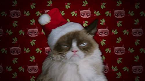 """Grumpy Cat is a lonely cat living in a mall pet shop. Because she never gets chosen by customers, she develops a sour outlook on life…until one day during the holidays, a very special 12-year-old girl named Chyrstal enters the pet store and falls in love with her after realizing she is the only person who can hear this unique cat talk. As the two develop a close friendship during the holiday rush, Grumpy reluctantly thwarts the kidnapping of an exotic dog she dislikes, and on Christmas Eve rescues Chyrstal after the mall closes. Through her adventures, will Grumpy learn the true meaning of Christmas? Or will it be, in her words, the """"Worst. Christmas. Ever?"""""""