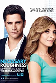 Primary photo for Necessary Roughness