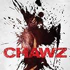 Chawu (2009)