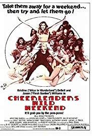 The Great American Girl Robbery(1979) Poster - Movie Forum, Cast, Reviews