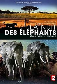 Primary photo for La nuit des éléphants