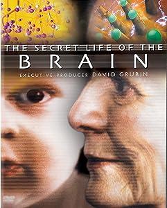 Regarder un film The Secret Life of the Brain - Losing Control [mkv] [640x480]