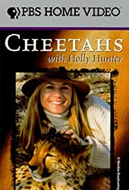 Cheetahs with Holly Hunter Poster