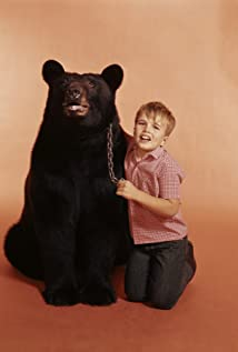 Bruno The Bear Picture