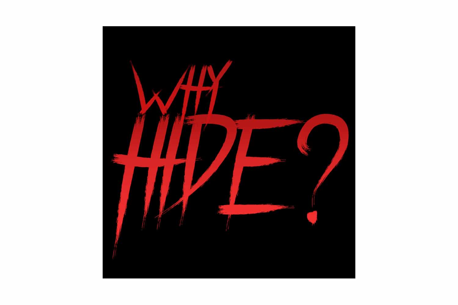 Why Hide? (2018)
