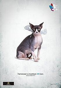 English movie videos download Lovemakers Hungary [Avi]