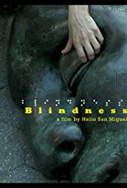 Blindness(2007) Poster - Movie Forum, Cast, Reviews