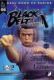 Shaolin Temple Against Lama Poster