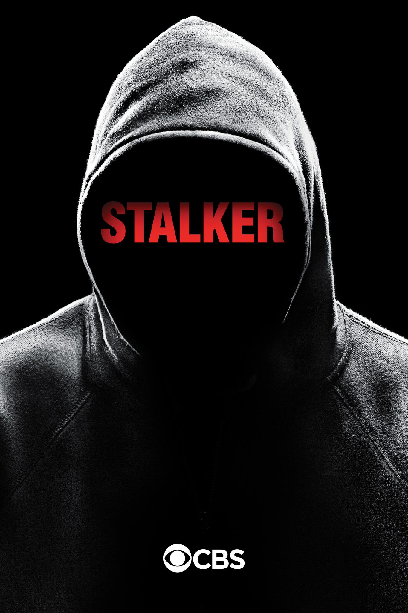 Image result for stalker cbs