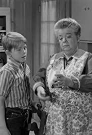 The Andy Griffith Show Opie And The Carnival Tv Episode 1965 Imdb