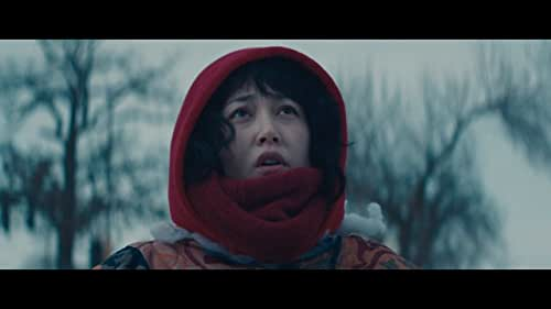 Kumiko is a frustrated Office Lady whose imagination transcends the confines of her mundane life. Kumiko becomes obsessed with a mysterious, battered VHS tape of a popular film she's mistaken for a documentary, fixating on a scene where a suitcase of stolen cash is buried in the desolate, frozen landscape of North Dakota. Believing this treasure to be real, she leaves behind Tokyo and her beloved rabbit Bunzo to recover it - and finds herself on a dangerous adventure unlike anything she's seen in the movies.
