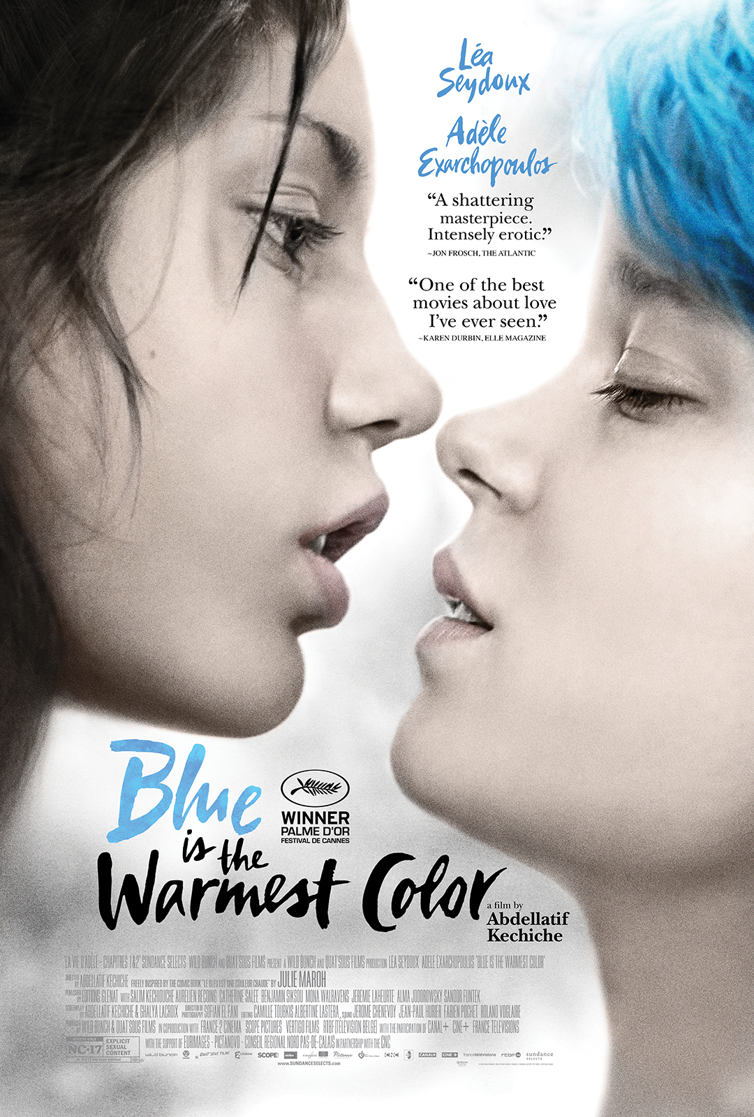 ŽYDRA SPALVA – ŠILČIAUSIA (2013) / BLUE IS THE WARMEST COLOR