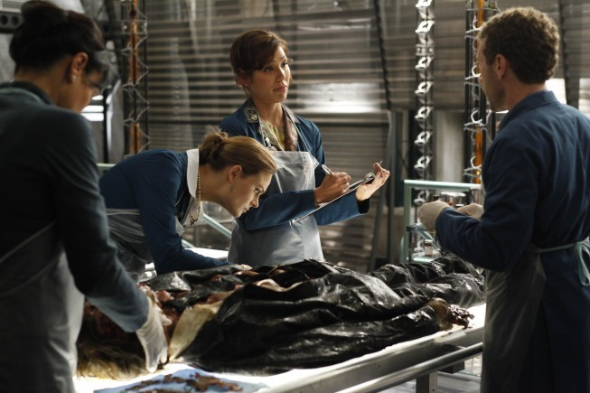Michaela Conlin, Emily Deschanel, Tamara Taylor, and T.J. Thyne in Bones (2005)