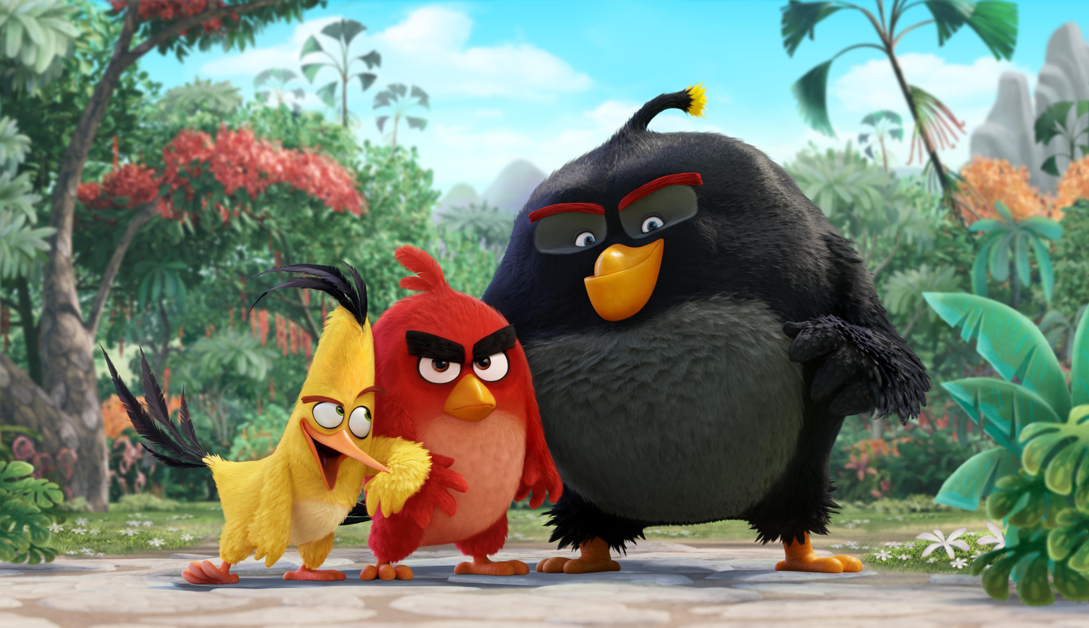 Angry Birds 2016 Gallery IMDb