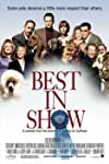 The National Dog Show's Top 3 Dogs to Watch