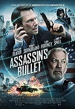 Assassin's Bullet