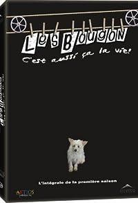 Primary photo for Les Bougon: C'est aussi ça la vie