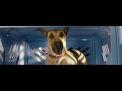 Marmaduke: Trailer #2