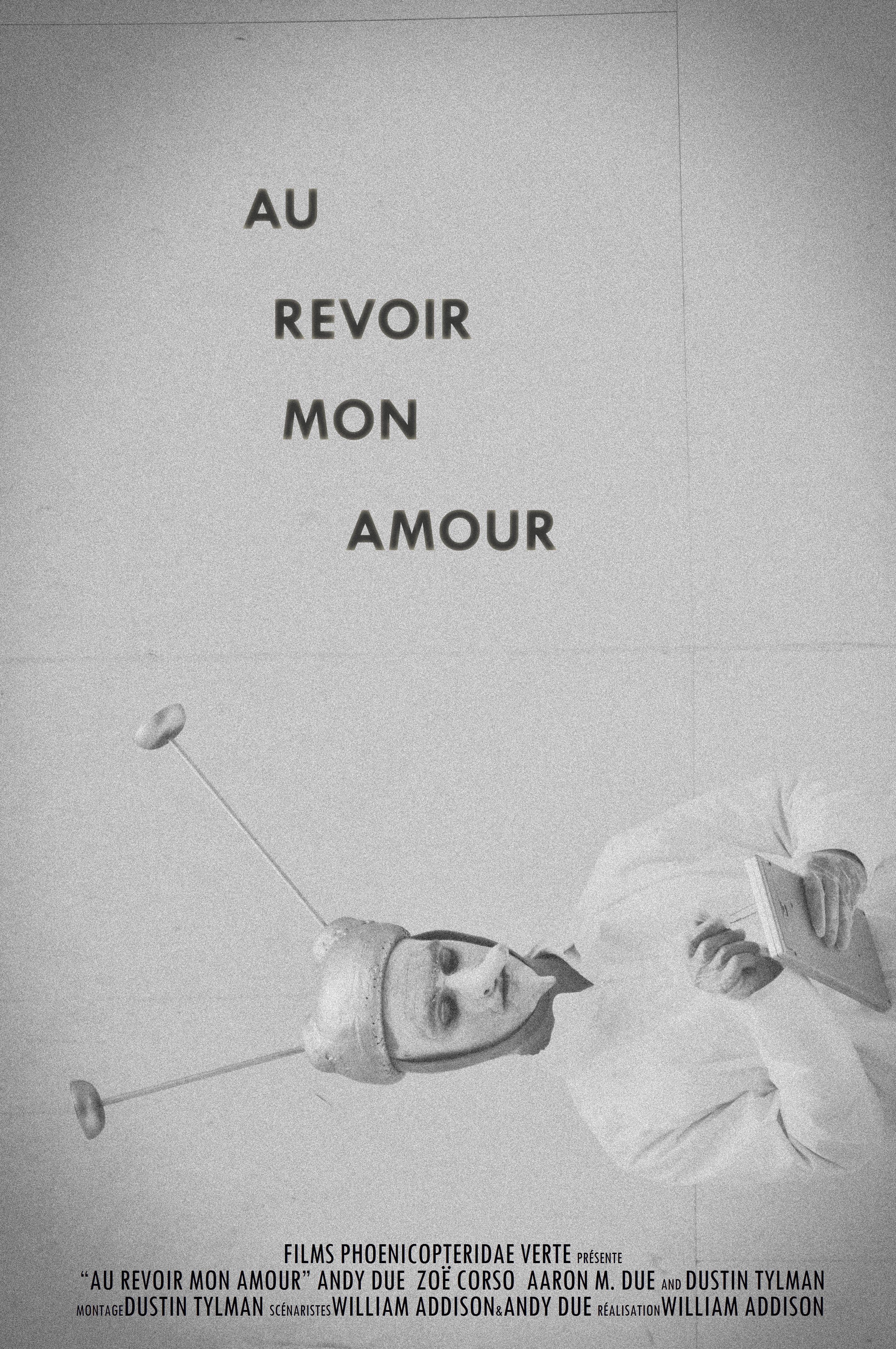 دانلود زیرنویس فارسی فیلم Au revoir mon amour