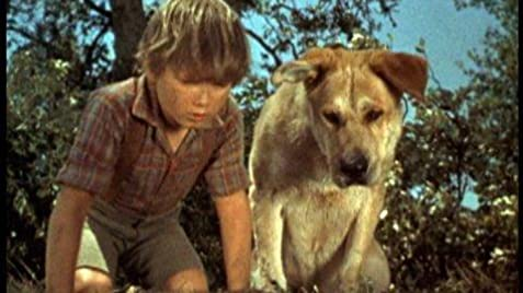 old yeller characters