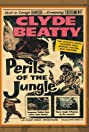 Perils of the Jungle (1953) Poster