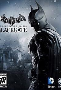 Primary photo for Batman: Arkham Origins - Blackgate