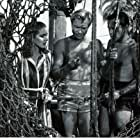 Julie Adams, Richard Carlson, and Richard Denning in Creature from the Black Lagoon (1954)