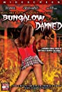 Bachelor Party in the Bungalow of the Damned (2008) Poster