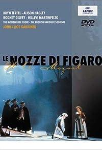 Primary photo for Le nozze di Figaro
