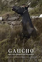 Gaucho: The Last Cowboys of Patagonia