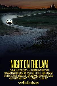Adult divx movie downloads Night on the Lam USA [Quad]