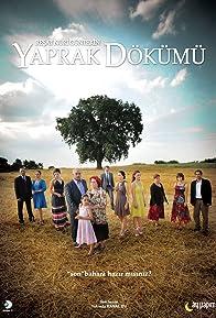 Primary photo for Yaprak Dökümü