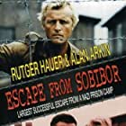 Alan Arkin, Rutger Hauer, and Joanna Pacula in Escape from Sobibor (1987)
