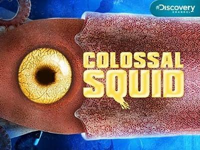 Watch american me full movie Squid Invasion [2k]