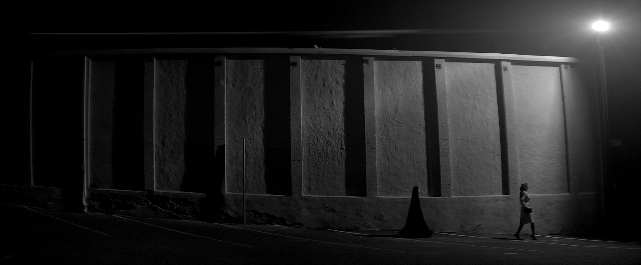 Mozhan Marnò and Sheila Vand in A Girl Walks Home Alone at Night (2014)