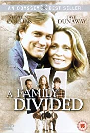 A Family Divided(1995) Poster - Movie Forum, Cast, Reviews