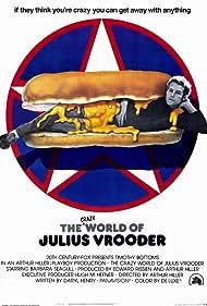 The Crazy World of Julius Vrooder (1974)