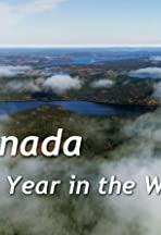 Canada: A Year in the Wild