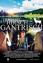 Der weisse Hirsch vom Gantrisch