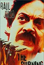 Primary image for The Burning Season: The Chico Mendes Story