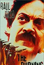 The Burning Season: The Chico Mendes Story