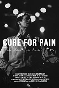 Primary photo for Cure for Pain: The Mark Sandman Story