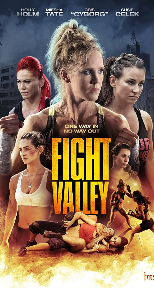 Subtitle of Fight Valley
