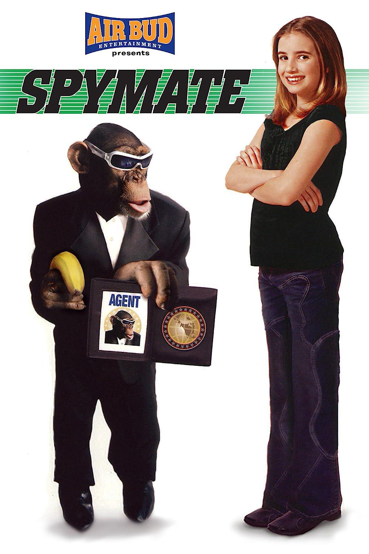 Spymate 2003 Hindi Dual Audio 720p BluRay  760MB Download