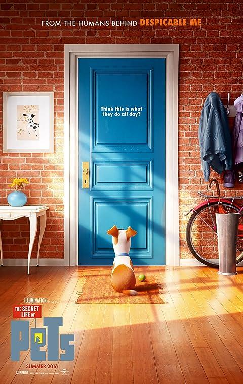 寵物當家   awwrated   你的 Netflix 避雷好幫手!