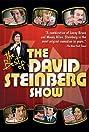 The David Steinberg Show