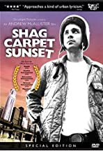 Shag Carpet Sunset