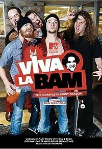 Primary photo for Viva la Bam