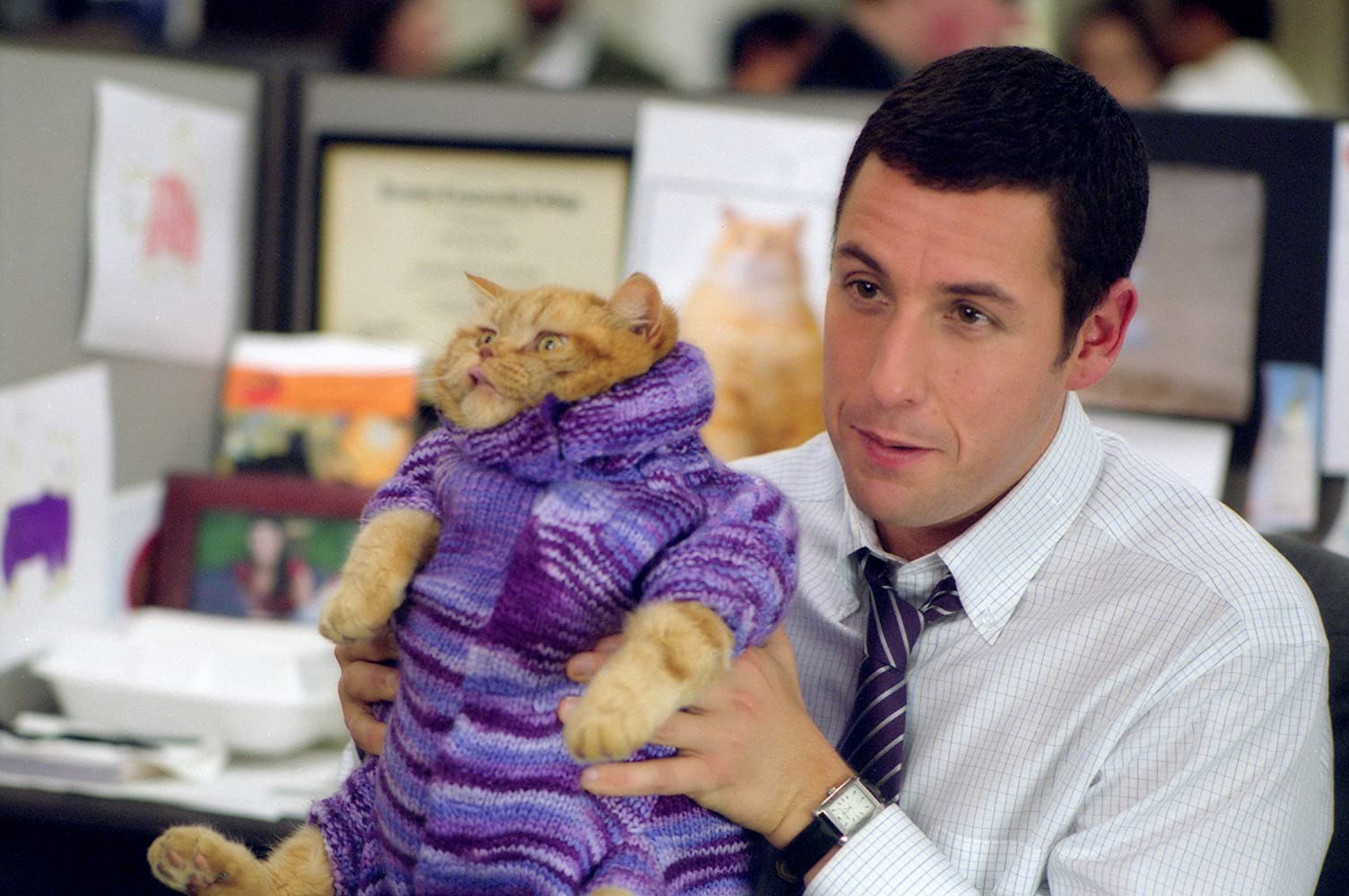Adam Sandler in Anger Management (2003)