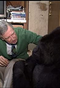 Primary photo for Koko